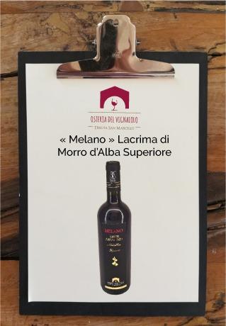 tenuta-san-marcello-agriturismo-ristorante-campagna-marche-osteria-del-vignaiolo-lavagnetta-vino1