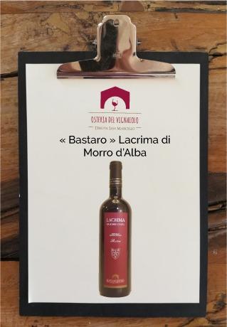 tenuta-san-marcello-agriturismo-ristorante-campagna-marche-osteria-del-vignaiolo-lavagnetta-vino2