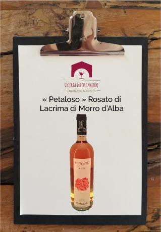 tenuta-san-marcello-agriturismo-ristorante-campagna-marche-osteria-del-vignaiolo-lavagnetta-vino3